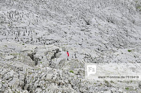 Wanderer auf dem Gottesackerplateau  Kleinwalsertal  Vorarlberg  Allgäuer Alpen  Österreich  Europa  ÖffentlicherGrund