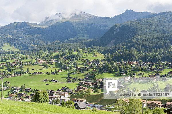 Europa, Berg, Gebäude, Alpen, Berner Oberland, Grindelwald, Schweiz, Kanton Bern