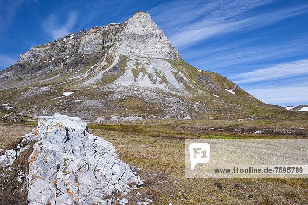 Alkehornet  Westküste von Spitzbergen  Spitzbergen oder Svalbard Inselgruppe  Norwegen  Europa