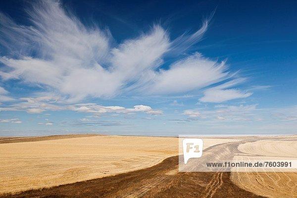 Vereinigte Staaten von Amerika  USA  Landschaft  Bundesstraße  Interstate  Prärie  South Dakota
