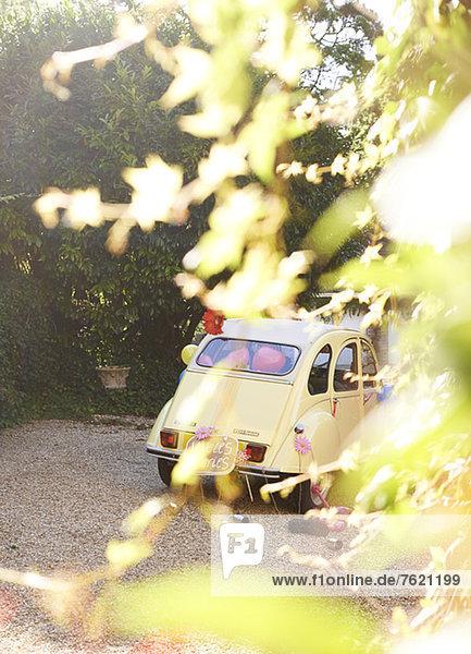 Gelbes Auto von Blättern verdeckt