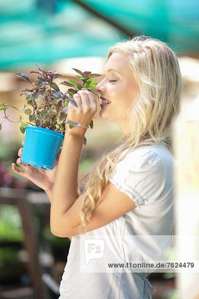 Frau riecht Pflanze in Gärtnerei