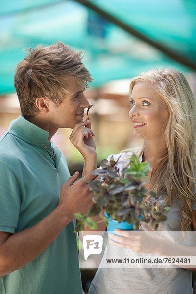 Paar riechende Pflanze in der Gärtnerei