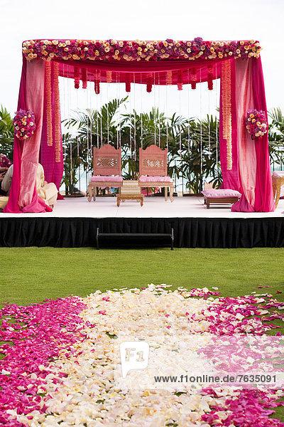 Blume  Hochzeit  weiß  pink