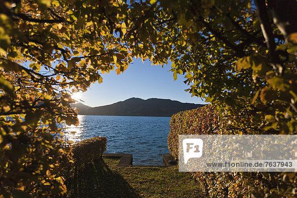 Europa See Herbst Österreich Stimmung Sonne Oberösterreich