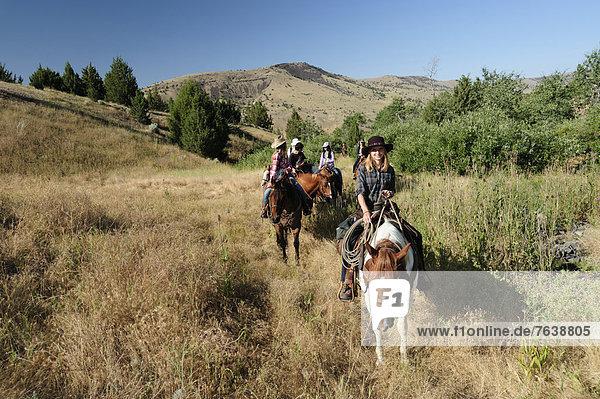 Vereinigte Staaten von Amerika  USA  Frau  Sport  Amerika  Tourist  reiten - Pferd  Gras  Mädchen  Cowgirl  Oregon  Ranch
