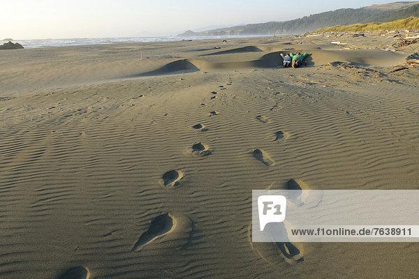 Vereinigte Staaten von Amerika  USA  Frau  Mann  Mensch  Amerika  Entspannung  Menschen  Strand  Küste  Natur  Sand  ungestüm  Nordamerika  Außenaufnahme  Düne  Bier  Oregon