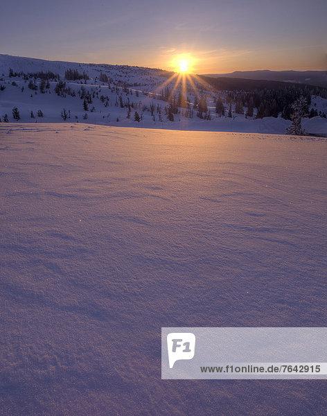 Vereinigte Staaten von Amerika  USA  Winter  Amerika  Sonnenuntergang  Jahreszeit  Mount Hood  National Forest  Nationalforst  Oregon  Schnee