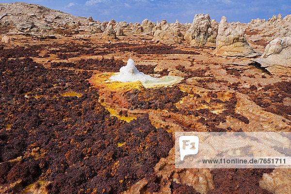 Aktivitäten  Landschaft  Vulkan  Form  Formen  Dallol