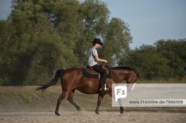 Frau trabt auf einem Quarter Horse