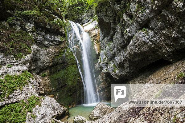 Slap Mostnica  Mostnica-Wasserfall  Nationalpark Triglav  Slowenien  Europa Slap Mostnica, Mostnica-Wasserfall, Nationalpark Triglav, Slowenien, Europa