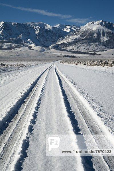 Spur  Schnee  Reifen  Autoreifen