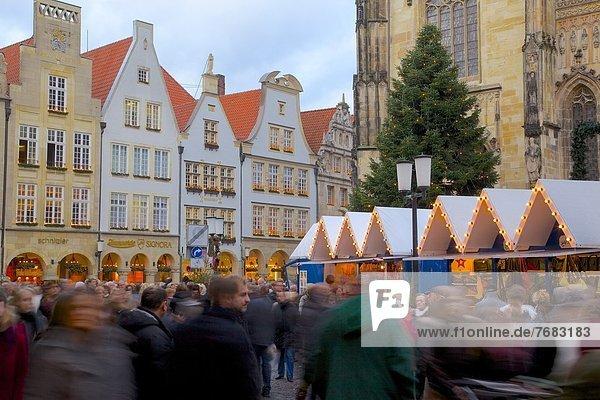 Christmas Market on Prinzipalmarkt  Munster  North Rhine-Westphalia  Germany  Europe