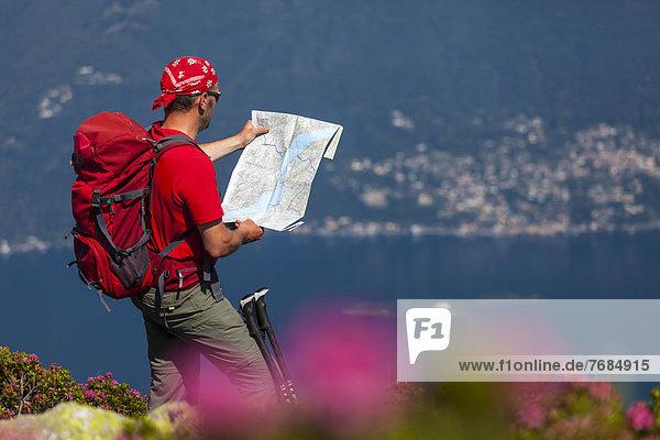 Ein Mann beim Wandern  studiert die Wanderkarte am Monte Covreto  Lago Maggiore  Tessin  Schweiz  Europa Ein Mann beim Wandern, studiert die Wanderkarte am Monte Covreto, Lago Maggiore, Tessin, Schweiz, Europa