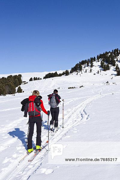 Skiwanderer beim Aufstieg zum Rittnerhorn  Südtirol  Italien  Europa