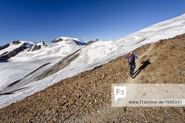 Bergsteiger auf dem Gipfelgrat der Zufallspitz  hinten der Monte Vioz  Südtirol  Italien  Europa