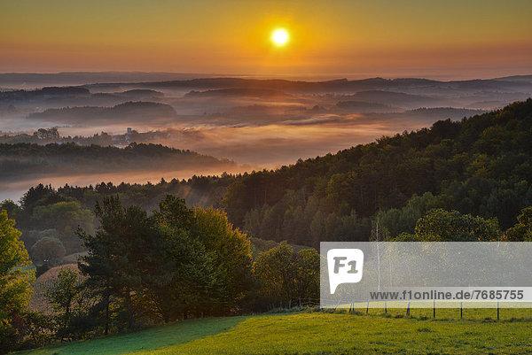 Nebelstimmung bei Sonnenaufgang  Kulm  Oststeirisches Hügelland  Österreich  Europa