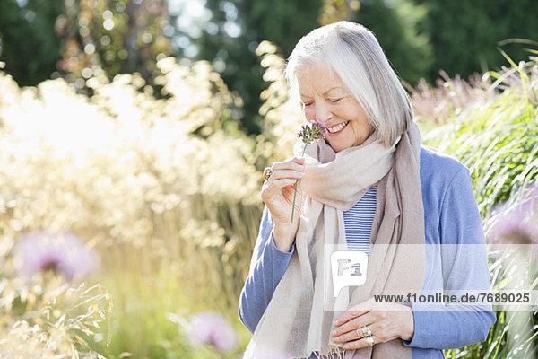 Ältere Frau riecht Blumen im Freien Ältere Frau riecht Blumen im Freien