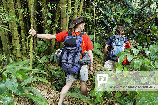 Touristen beim Dschungeltrekking  Nationalpark Guadeloupe  Kleine Antillen  Karibik Touristen beim Dschungeltrekking, Nationalpark Guadeloupe, Kleine Antillen, Karibik