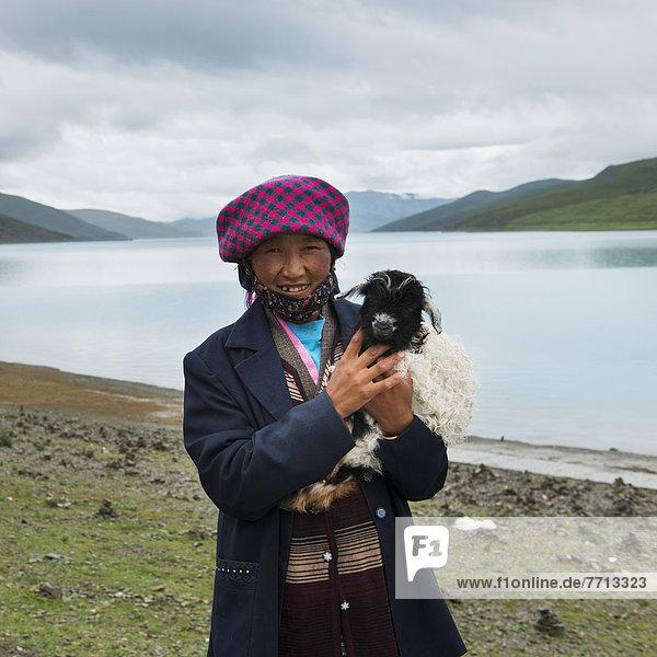 Ziege  Capra aegagrus hircus  Ecke  Ecken  klein  See  Heiligkeit  China  Tibet