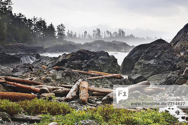folgen ungestüm Insel Pazifischer Ozean Pazifik Stiller Ozean Großer Ozean vorwärts britisch Kanada Treibholz Ucluelet Vancouver