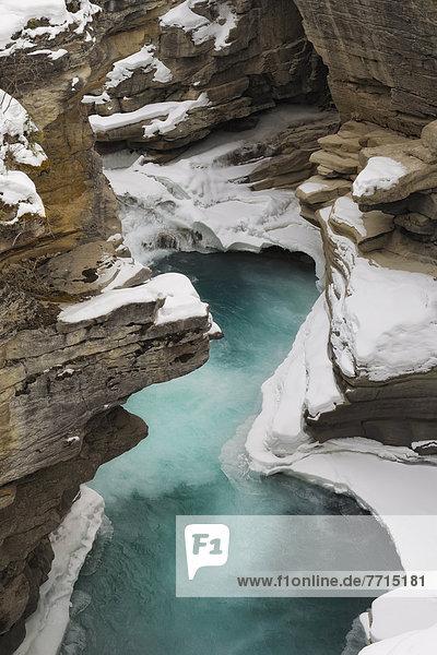 Winter  Jasper Nationalpark