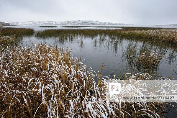 Winter  über  Hügel  See  Ländliches Motiv  ländliche Motive