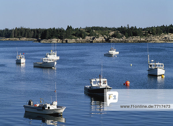 Hafen  Boot  Hummer