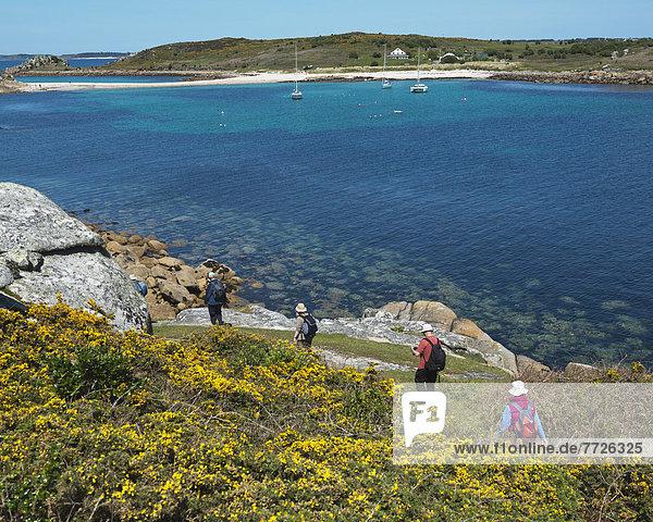 entfernt  Europa  Großbritannien  Weg  Küste  Sand  Insel  wandern  Cornwall