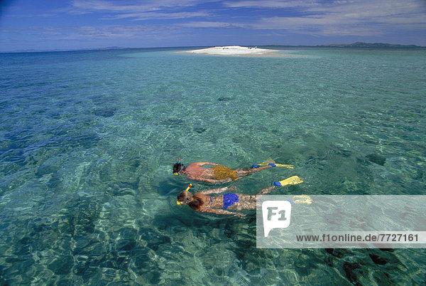über  seicht  schnorcheln  Ansicht  Fiji  Riff