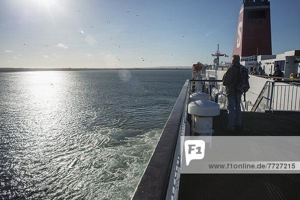 einsteigen  Mann  Großbritannien  Boot  Fähre  Irland
