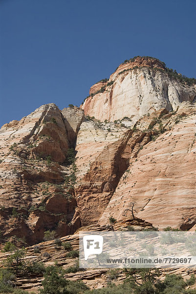 Utah  Zion National Park  Scenery Near The Zion Mount Camel Highway.