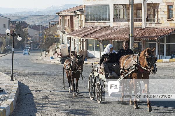 binden, Transport, Zeichnung, reiten - Pferd, mitfahren, Mann und Frau