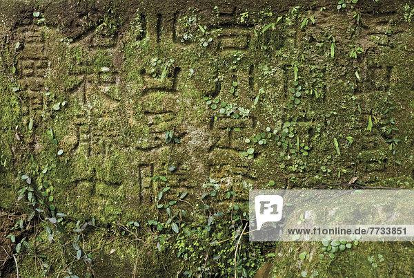 bedecken  Stein  grün  Inschrift  Japan  japanisch  Moos  Nara  alt