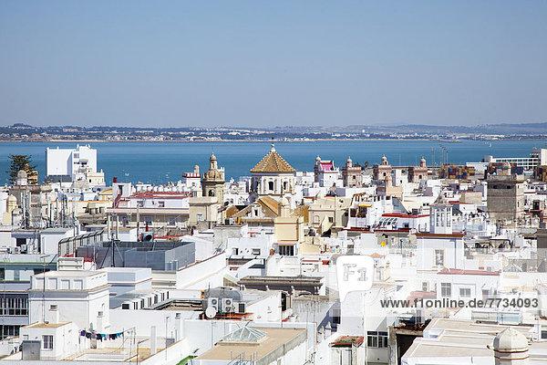 Gebäude  Küste  Stadt  vorwärts  gekalkt  Andalusien  Cadiz  Spanien