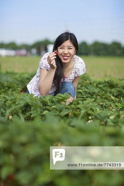 Junge Japanerin zeigt Erdbeere im Feld