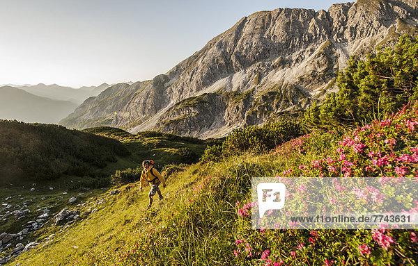 Österreich  Salzburger Land  Mann wandert im Morgengrauen durch die Niederen Tauern