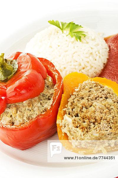 Teller gefüllter Paprika mit Reis und Tomatensauce auf weißem Grund  Nahaufnahme