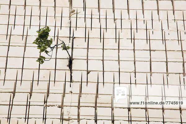 Spanien  Menorca  Ansicht der Fassade des Pedreres de s'Hostal