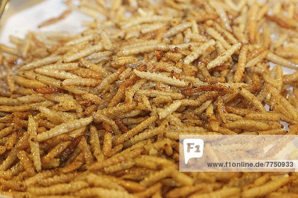 Fried maggots at a Thai market