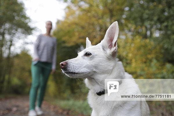 Frau mit einem Hund an der Leine in der Natur