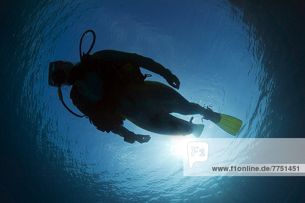 Silhouette of a scuba diver under water