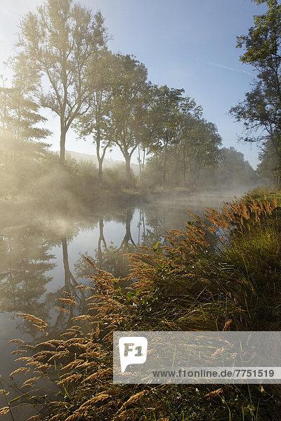 Canal des Vosges  früher Canal de l?Est  bei PK 100 5  mit Morgennebel und Morgensonne