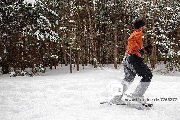 Vereinigte Staaten von Amerika  USA  Staub wischen  staubwischen  Berg  Mann  Wald  weiß  Hampshire  neu  Schnee  Schneeschuhlaufen