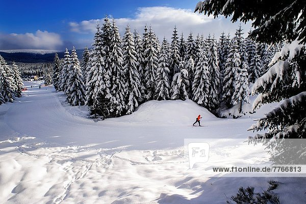 überqueren  Winter  Skifahrer  Landschaft  Kreuz  gefroren  Polen
