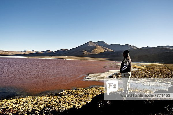 See  seicht  rot  Laguna Colorada  Speisesalz  Salz  Südamerika