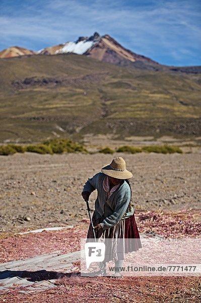 Bolivien  Südamerika