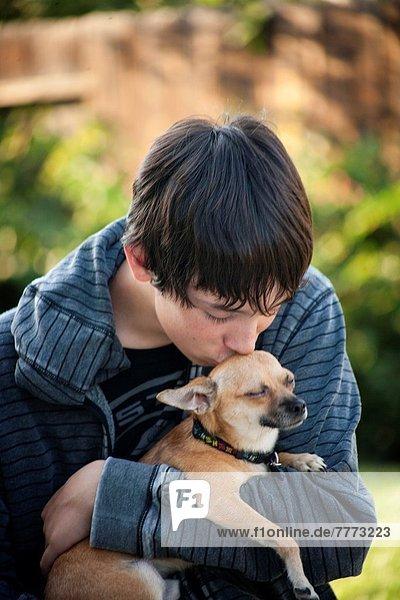 Chihuahua  Chihuahuas  Mann  Zuneigung  klein  jung
