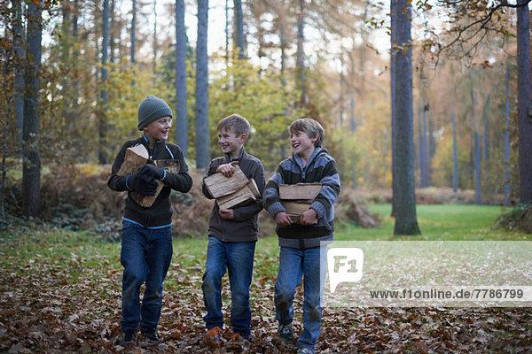 Jungen  die durch den Wald laufen und Holz tragen