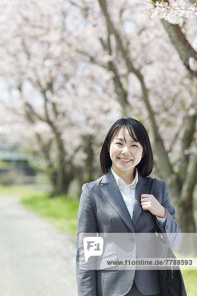 Geschäftsfrau  Baum  Kirsche  Blüte